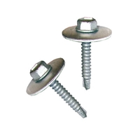Tek Screw Bubble Fasteners (20 pack)