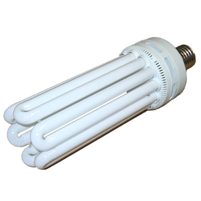 125 Watt CFL Grow Light Bulbs cfl, light, plant, grow, compact, fluorescent, 125, watt, growing, indoor, greenhouse, garden, growth